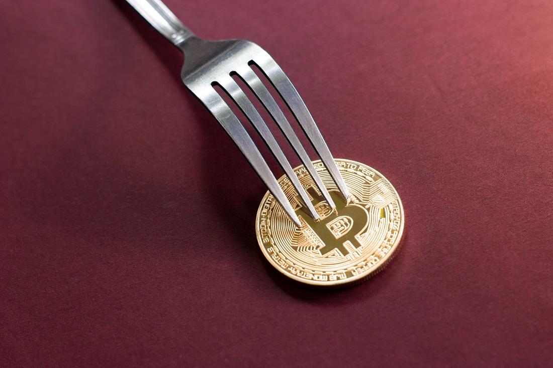 比特币分叉币有哪些?2020年十大比特币分叉币排行榜!